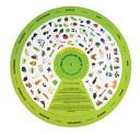 The Local Foods Wheel - San Francisco Bay Area
