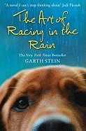 Art of Racing in the Rain a Novel. Garth Stein