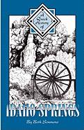 Quick History of Idaho Springs