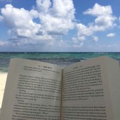 Beachesnbooks