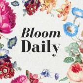 bloomdailyblog