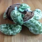 TurtleLibrarian