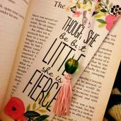 fifis_bookshelf